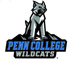 pct wildcat logo